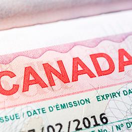 Conoce las últimas actualizaciones de visado para visitar Canadá como estudiante